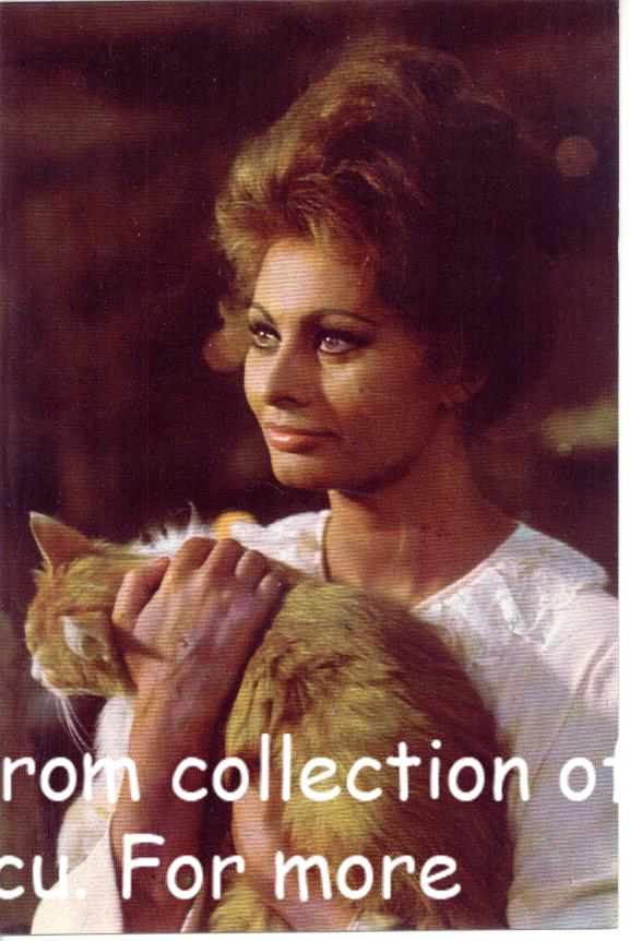 SOPHIA LOREN Vintage Movie Posters CC1345 24 cards Postcards Pack